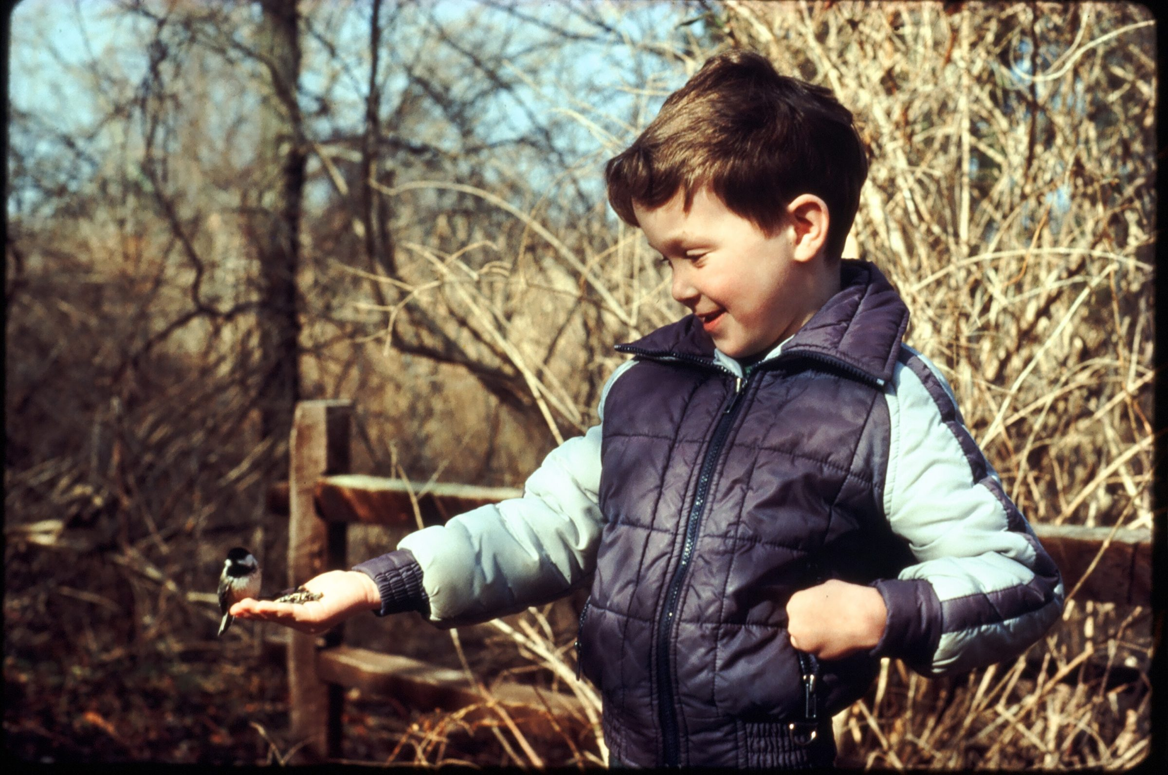 Boy feeding a bird in the Pine Barrens