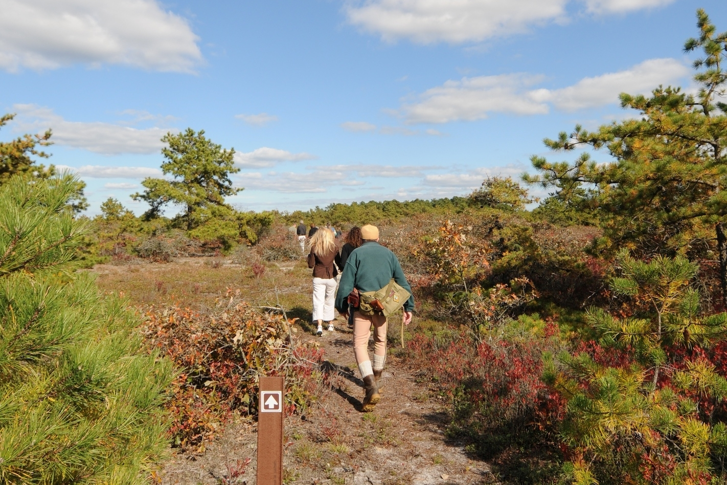 People walking through the Dwarf Pine Plains