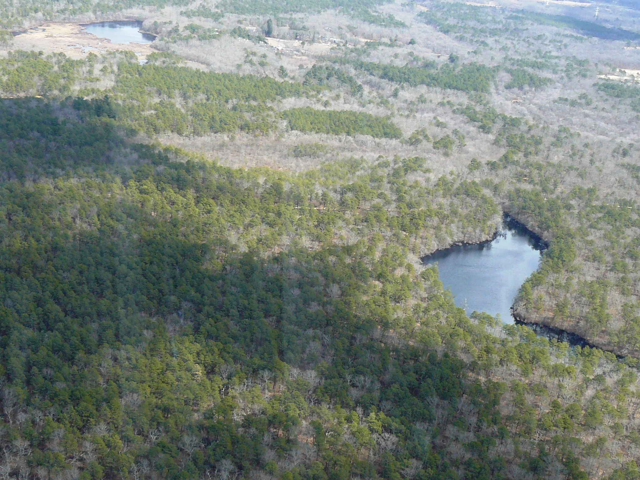 Aerial view of the Pine Barrens forest and a lake