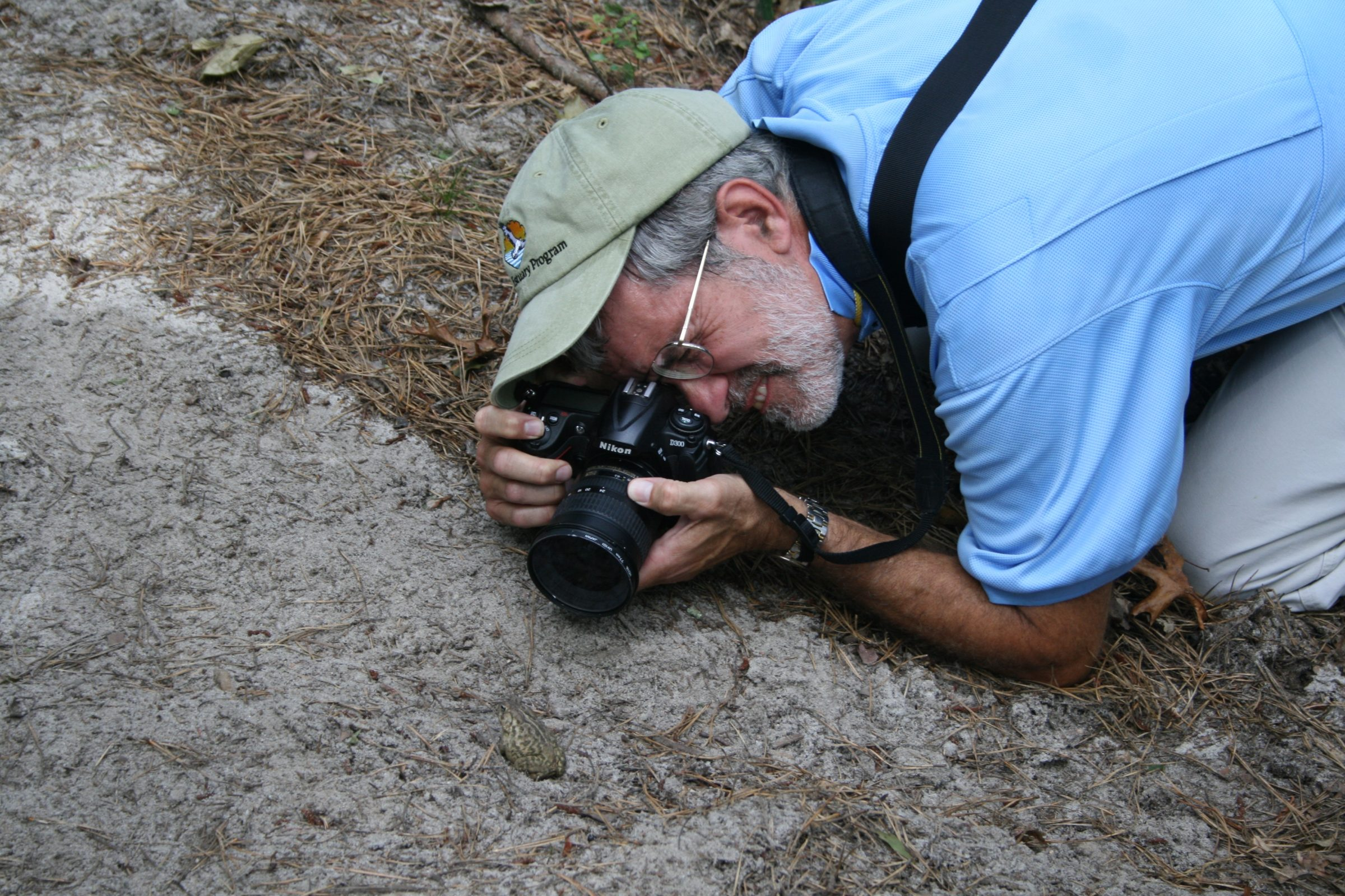 Man on the ground photographing a toad