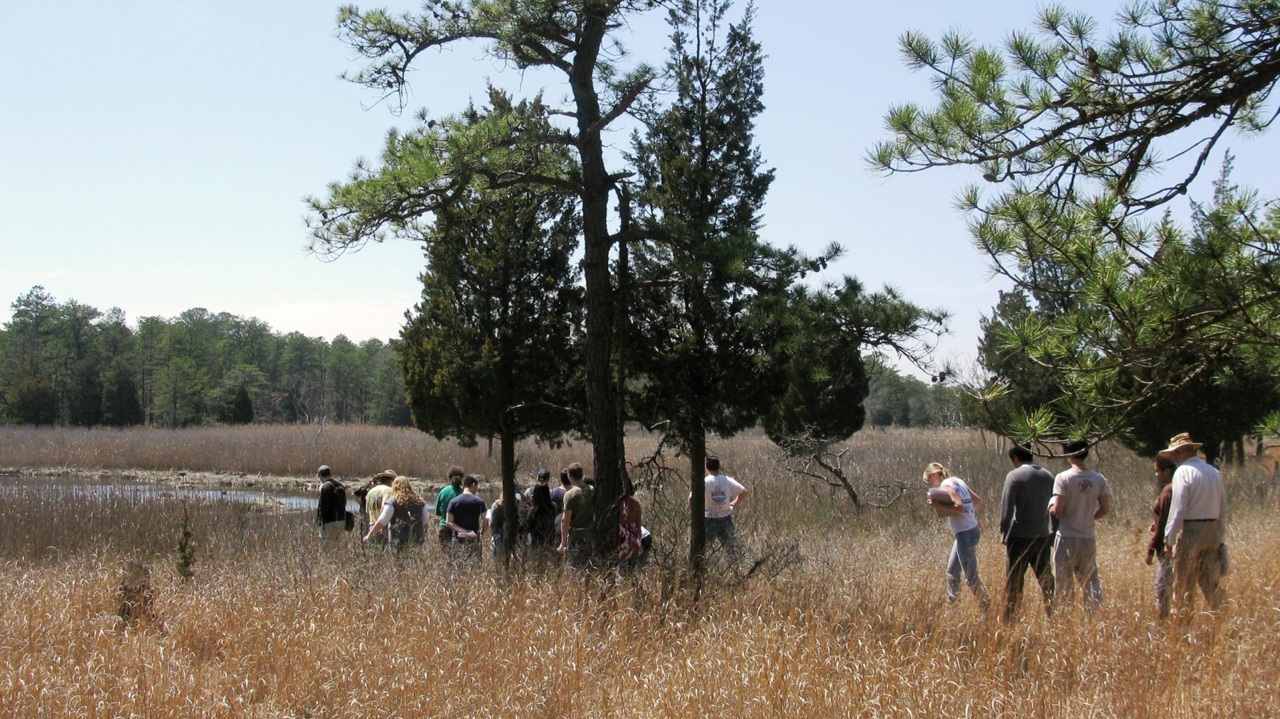 People on a group hike in the Pine Barrens