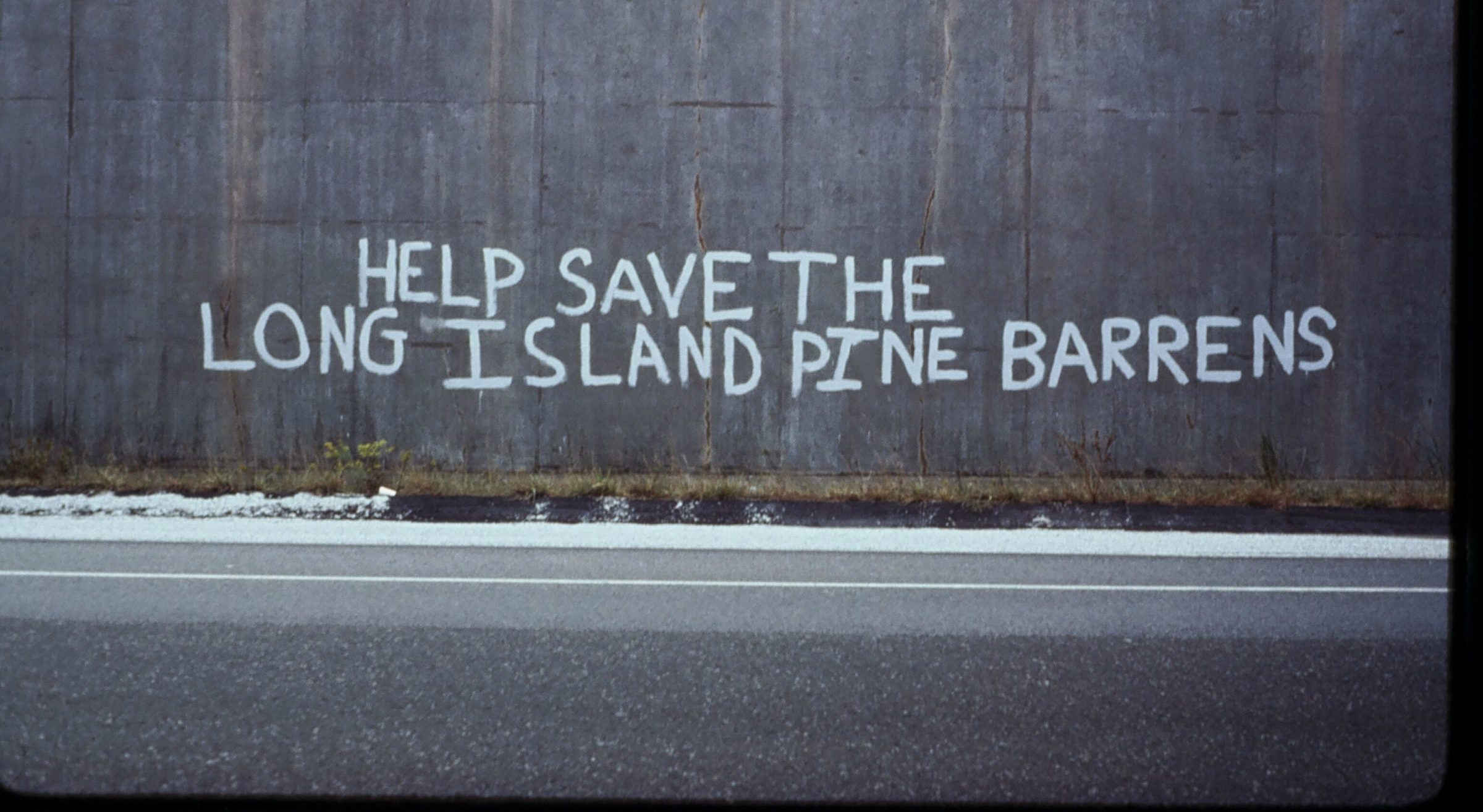 Graffiti that reads help save the Long Island Pine Barrens