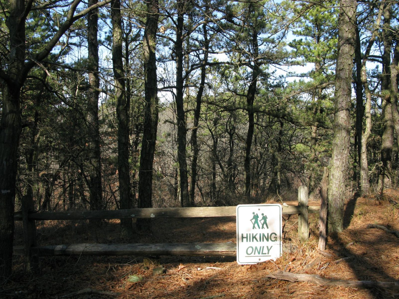 Sign that says Hikers Only along a fence in the Long Island Pine Barrens