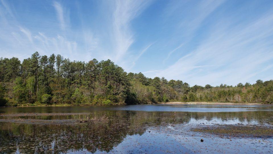 Little Pond at Cranberry Bog Nature Preserve - Pond and sky