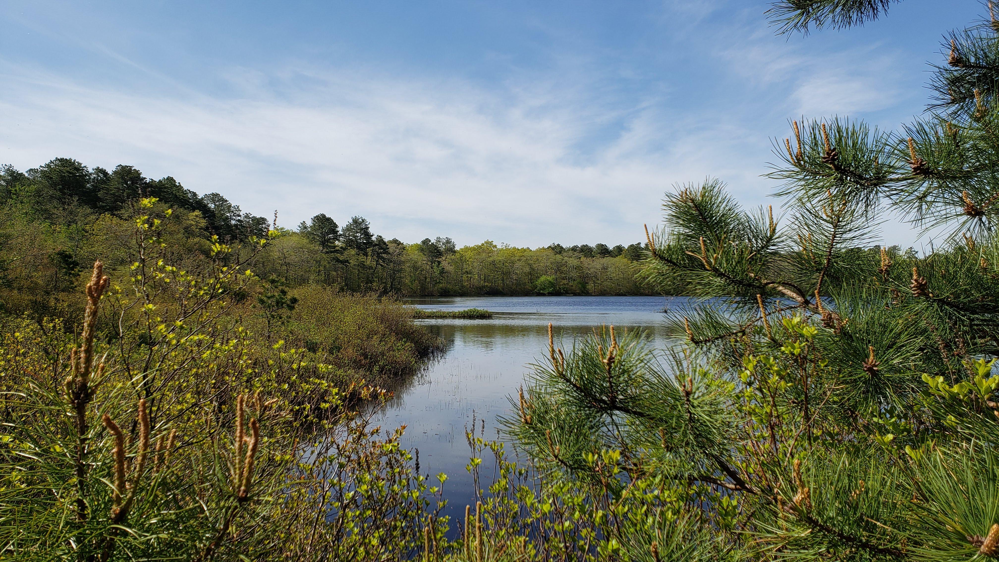 Long Island's Coastal Plain Ponds