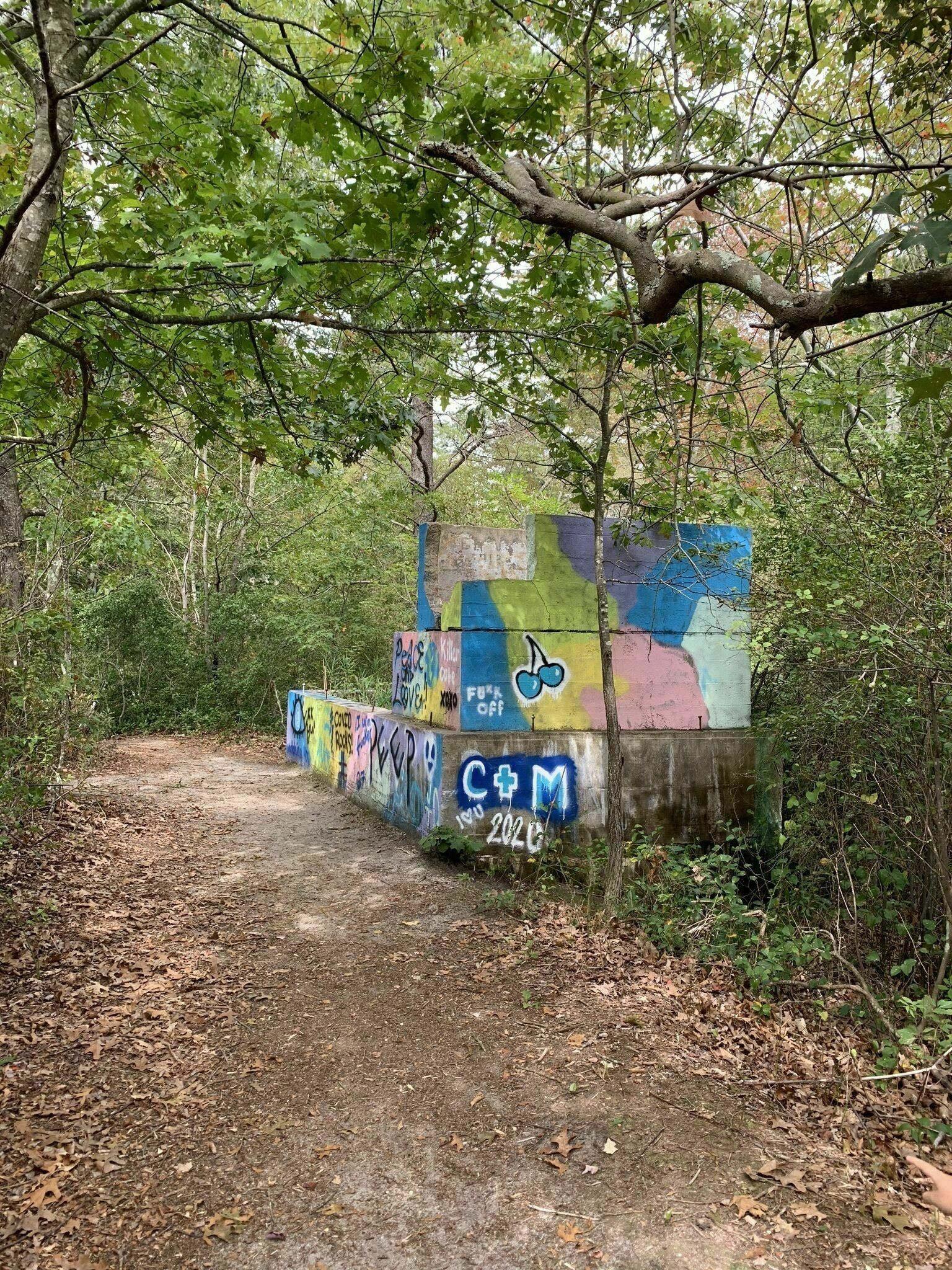 graffiti covering a historic stone structure in the pine barrens