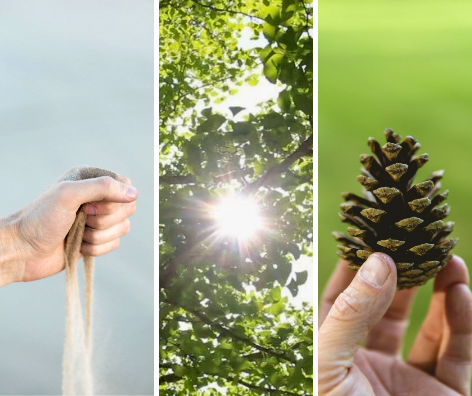 forest bathing - holding sand in your hands, looking at leaves, holding a pine cone